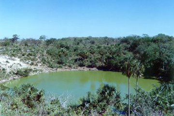 Antiguo cenote